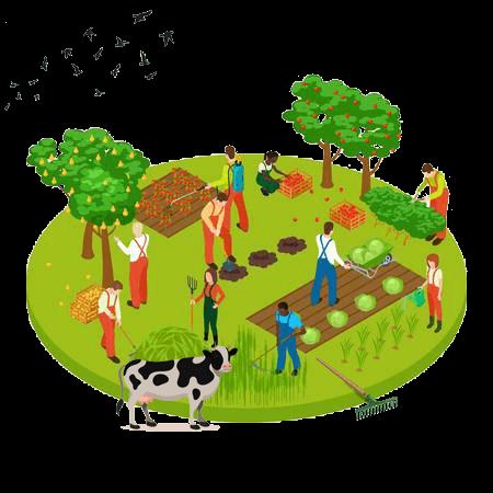 organic farming AJK