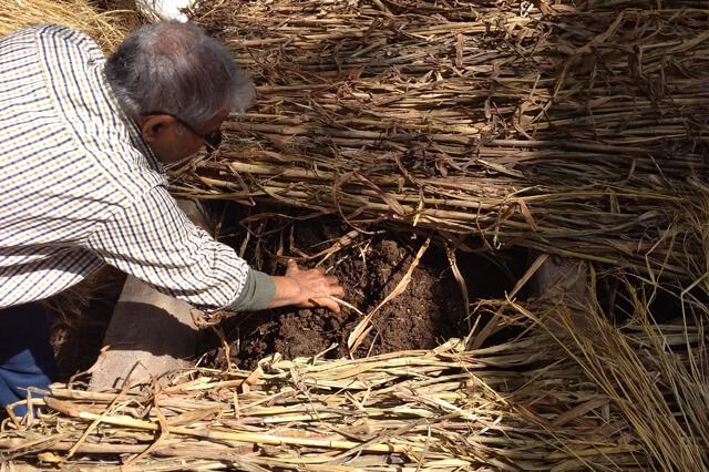 Apni jaivik kheti An Organic farm